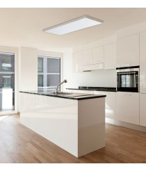 Aplique de techo rectangular LED de aluminio y acrílico en 2 medidas y 2 acabados – Dono – ACB Iluminación