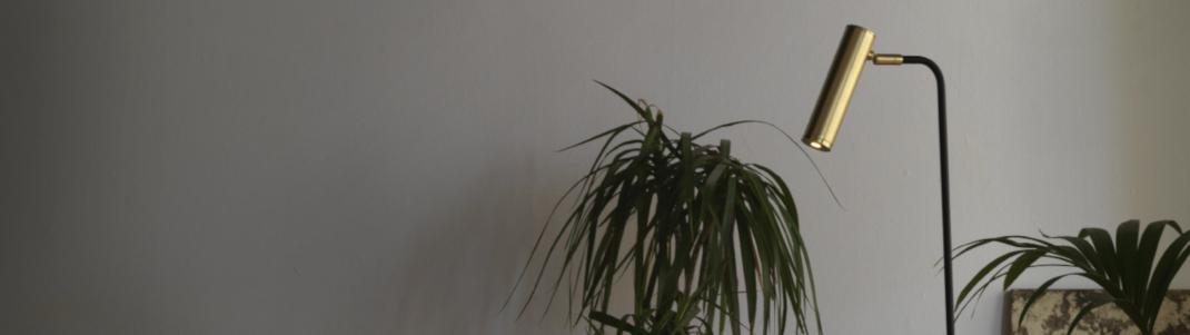 La mejor luz artificial para tus plantas